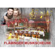 Werbe-Banner_FMS.jpg